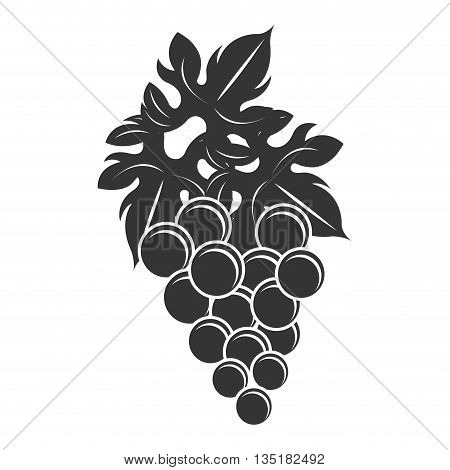 black bunch of gapes front view over isolated background, vector illustration
