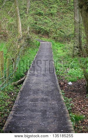 Wooden boardwalk with plastic mesh allowing easy access through a wet area in woodland with a background of trees and woodland vegetation.