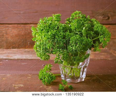 Fresh organic green curly parsley in a glass, on wooden background