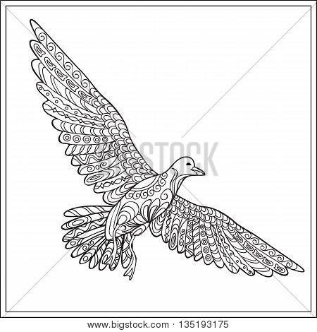 Hand drawn decorated isolated gaviota sea bird on the white background. Image for adult and children coloring book engraving etching embroidery decorate t-shorts tunics tattoo. eps 10