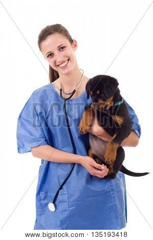 Brunette veterinary with a rottweiler puppy dog isolated on white background