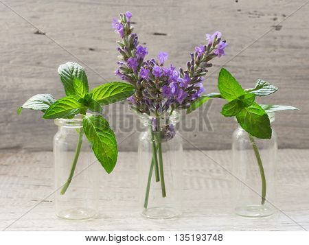 lavender and mint in the glass bottles
