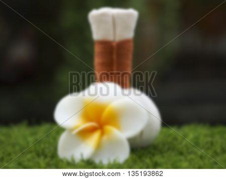Blurry spa massage compress balls, herbal ball with flower, Thailand