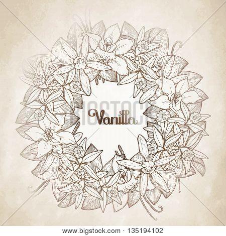 Graphic vanilla wreath in brawn colors. Vector floral decoration