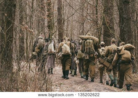 Group Of Unidentified Re-enactors Dressed As World War II Russian Soviet Soldiers In Camouflage Walks Through Forest.