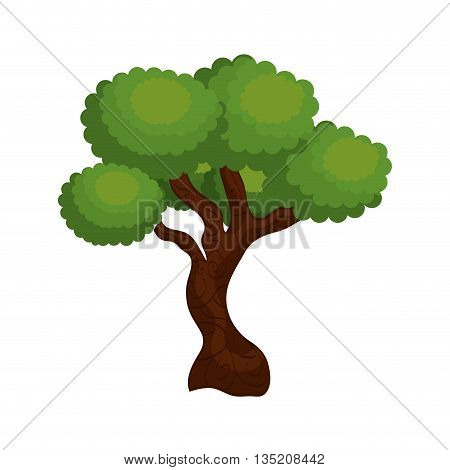 large and leafy tree isolated icon design, vector illustration  graphic