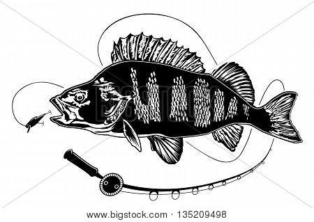 Perch New Fishing Rod