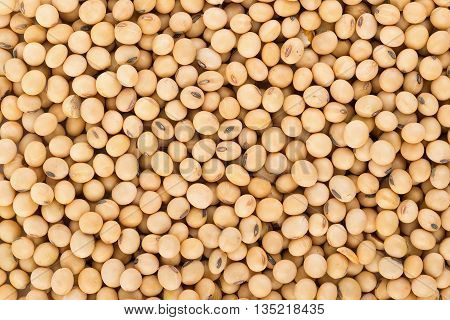 Closeup soy beans background. soy beans. food