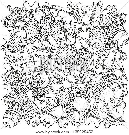 Pattern with artistically hand drawn acorns and oak leaves in vector. Ethnic, floral, doodle, zentangle, tribal design elements. Black and white. Made by trace from sketch.
