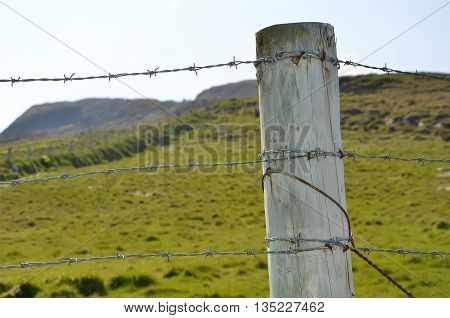 Barbed Wire And Detail Of Wooden Stake Boundary Of Pasture