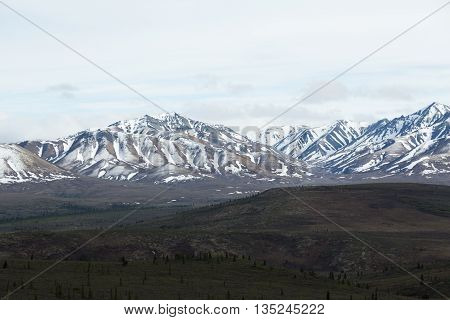 Snowcapped mountains in Alaska's Denali National Park
