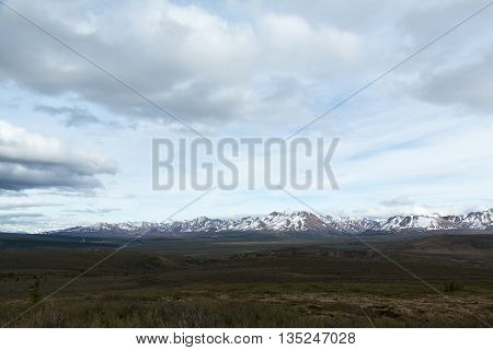Vast fields and snowcapped mountains in Alaska's Denali National Park