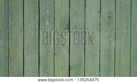 background trees wooden barn door green color looks great