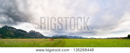 Green Valley in the German Alps with a chain of mountain peaks on the horizon. Meadow and Field in Bavaria