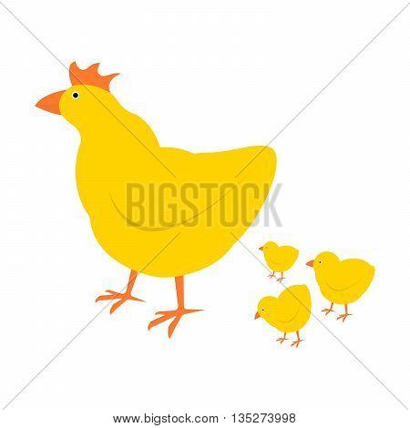 Chicken mother and chuk kid vector illustration. Cartoon chicken bird isolated on background. Cute chicken vector illustration.