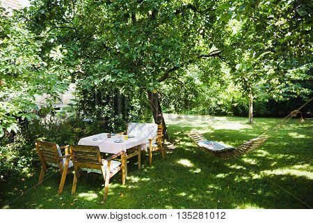 English garden in green lightfull summer selective focus