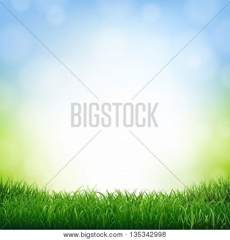 Nature Background With Grass Border