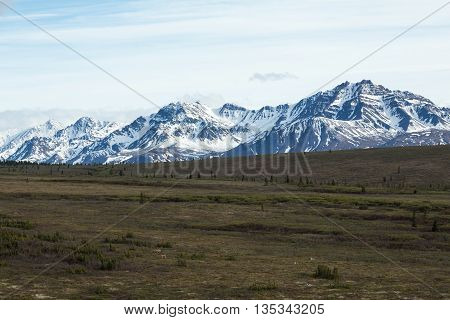 Snowcapped mountains behind fields in Alaska's Denali National Park