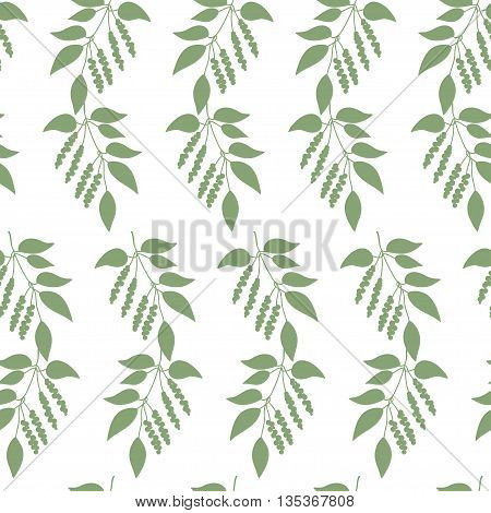 Seamless colorful pattern of Chinese Schisandra silhouette . Floral background. Vector illustration.