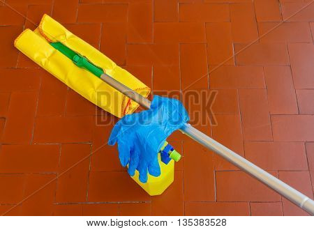 capture dust and wah the floor  with the  detergent  and gloves