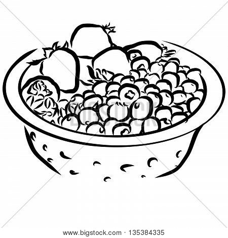 Bucket With Huckleberrys And Strawberrys Sketched Outline Vector Illustration