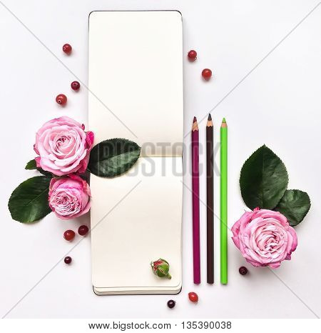 Colorful Composition With Sketchbook, Roses And Berries