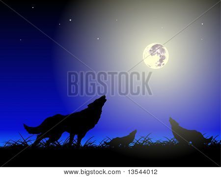 Wolfs And Moon