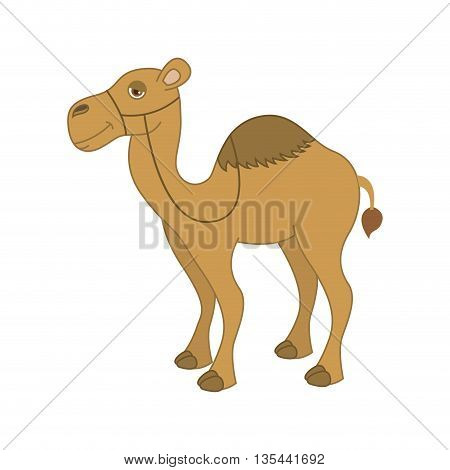 camel desert isolated icon design, vector illustration  graphic