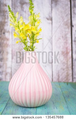 Wild yellow flowers in a vase, bouquet on blue wood background