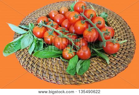 Luscious red cherry tomatoes on their stems presented on a wicker plate with fresh basil leaves