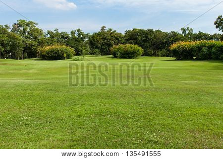 green grass field in public park and  blue sky