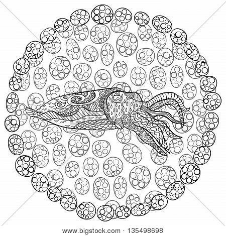Cuttlefish images illustrations vectors cuttlefish for Cuttlefish coloring pages