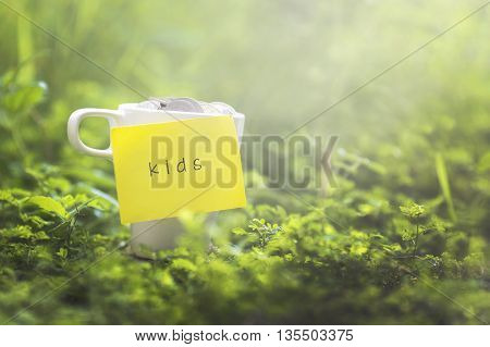 Coins in glass money mug with kids label blurred grass view at background. Financial concept.