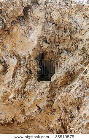 A big hole in a soil wall background.