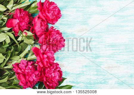 Background Made From Crimson Peonies
