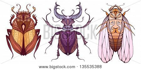 Insect set in color with a tribal pattern. Doodle scarab cicada and beetle deer separate from the background. Vector element for your creativity