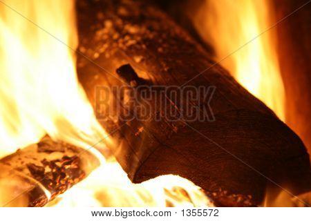 Campfire - Wood Burning Flames