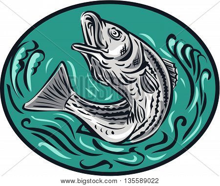 Drawing sketch style illustratoin of a rockfish also called striped bass Morone saxatilis Atlantic striped bass striper linesider pimpfish or rock jumping up set inside oval shape. poster