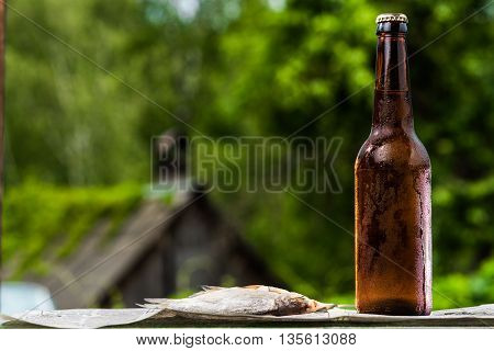 Beer And Dried Fish