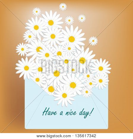 Have a nice day postcard. Daisy in envelope.