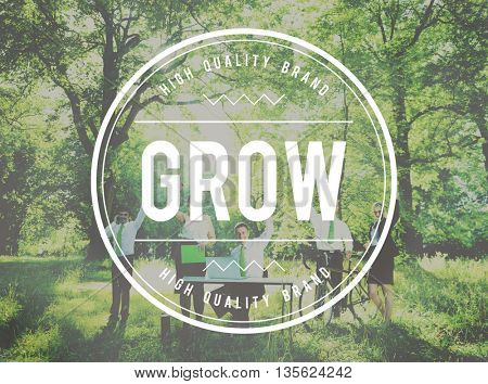 Grow Strategy Success Growth Increase Concept