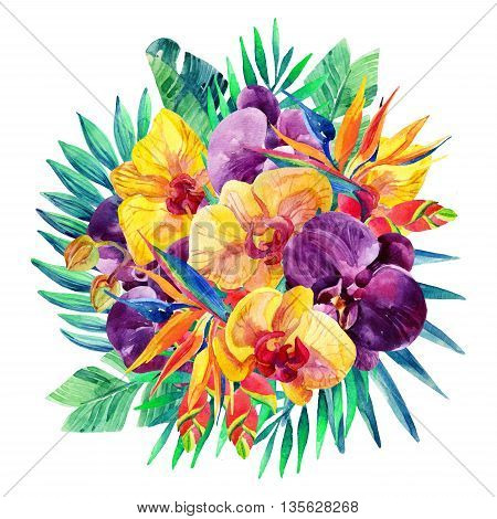 Watercolor exotic flowers arrangement. Orchid bloomings bird-of-paradise and tropical palm leaves card. Exotic flowers and jungle leaves. Hand painted watercolor illustration