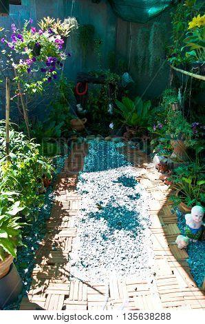 Mini garden in home, decoration in garden