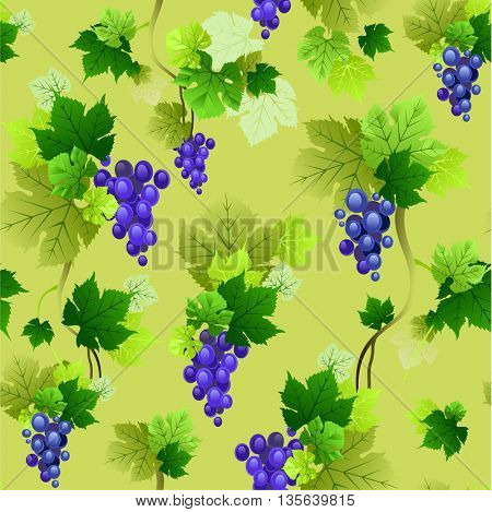 Grapes pattern on olive background. The natural design for banner, ticket, leaflet and so on.