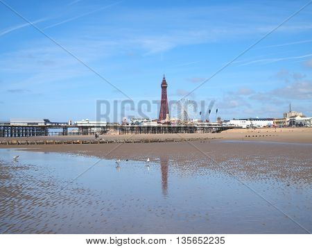 Blackpool tower and Central Pier with reflection