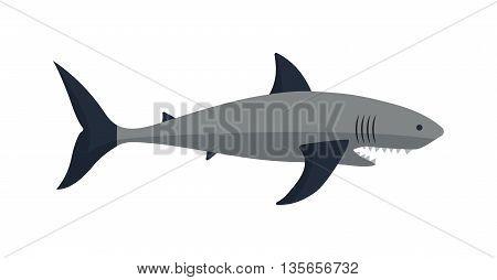 Cartoon shark vector illustration. Cool flat shark. Vector illustration with cartoon shark. Danger shark ocean character. Cartoon underwater shark marine animal. Big fish shark fish isolated.