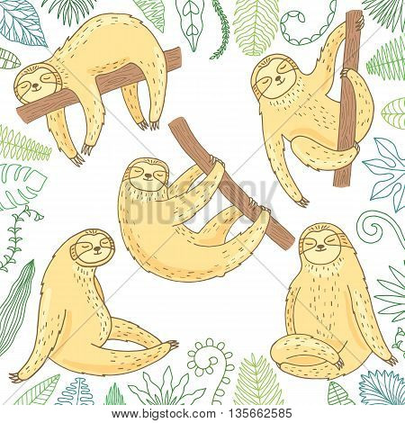 Cute sloth set isolated on white background