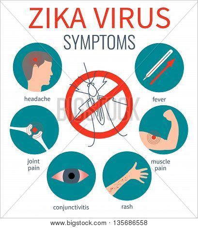Zika virus symptom icons - fever, headache, muscle pain, joint pain, red eyes, rash. Zika virus infographic elements. No mosquito sign. Transmission. Zika virus design template. Vector illustration.