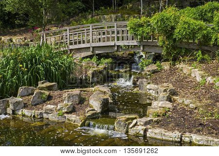 A view of the beautiful Japanese Garden Island located in Queen Marys Gardens in Regents Park London.