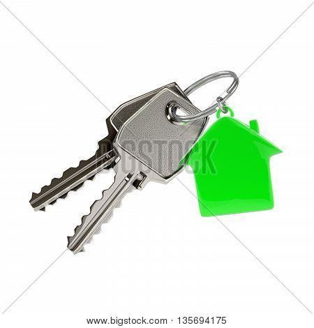 Two keys on a ring with a green plastic house chain. Photo-realistic. 3D illustration.
